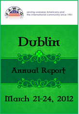 Dublin-annual-reports-screen-shot